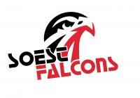Soest Falcons